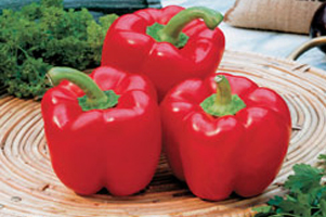 Adding-Superfood-To-Healthy-Diet-red-bell-pepper