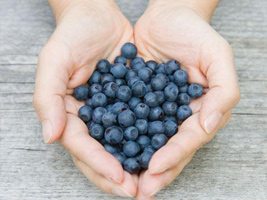 Superfood-For-Losing-Weight-Blueberries