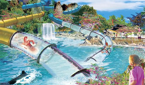 Best Water Parks In The World Aquatica Florida