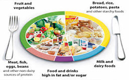 Healthy-Eating-101-Some-Food-For-Thought-balanced-diet